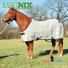 Equine Therapeutic Magnetic Products